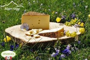 Our alpine cheese - all made from 100% hay milk