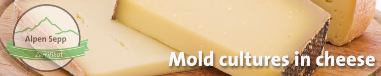Mold cultures in cheese